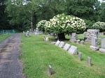 Cemetery 1L