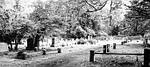 CemeteryMay