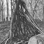 Wooden tepee